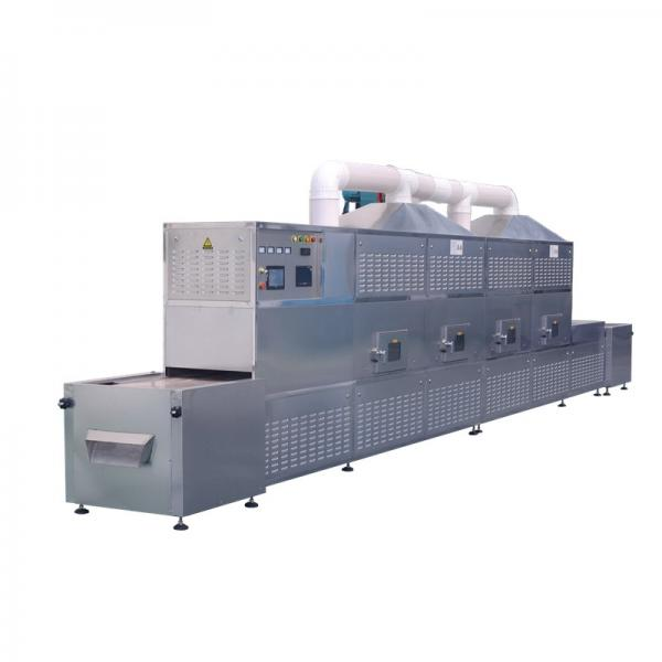 Microwave Drying Equipment Approved By CE #1 image