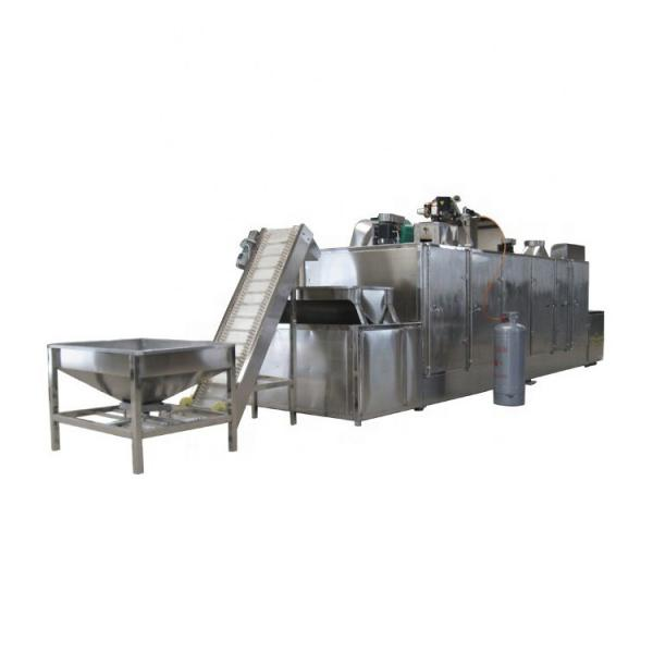 Ce Tunnel Belt Industrial Betaine Microwave Dryer #3 image