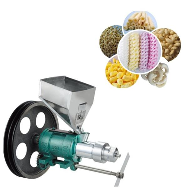 Factory Making Different Shapes Snacks Food Machine Extruder #1 image