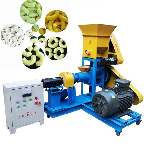 Bread Crumbs Snack Extrusion Food Machine Manufacture #1 image