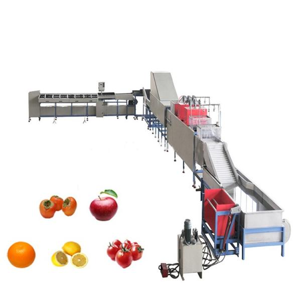 Complete Turnkey Fruit Vegetable Apple/Orange/Mango Fruit Juice Paste Processing Production Line Juice Fruit Filling Line Juice Concentrate Production Line #3 image
